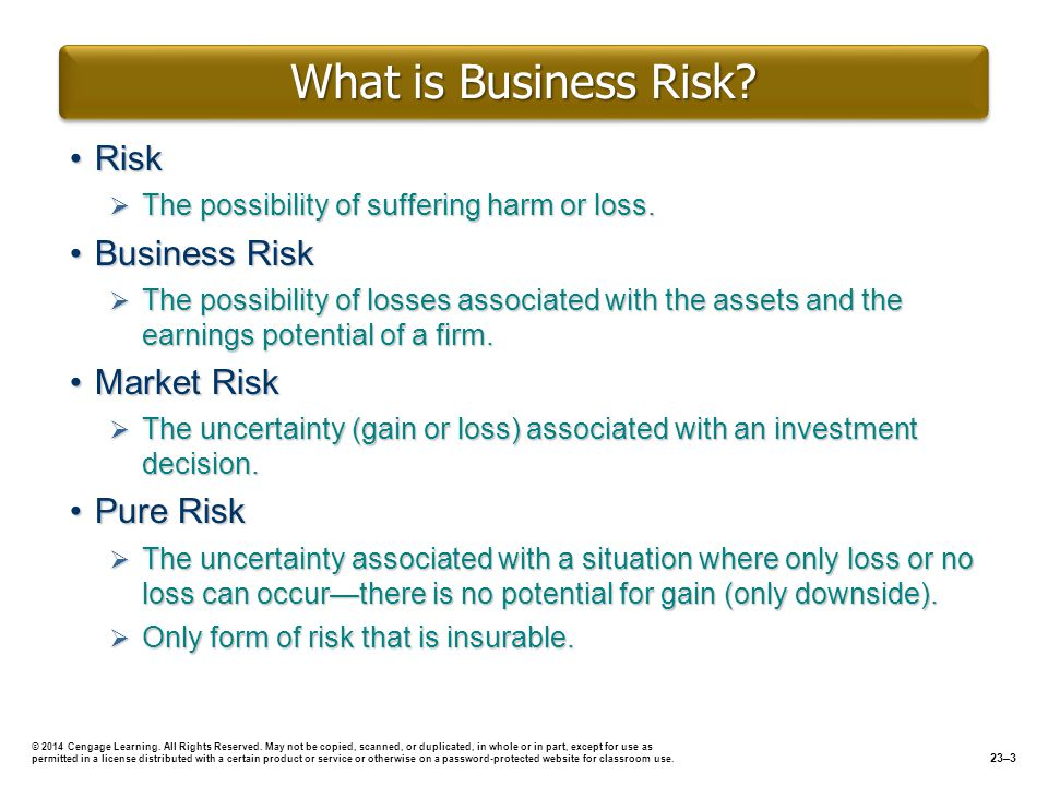 What Is Business Risk Risk Business Risk Market Risk Pure Risk  Define Business Investment