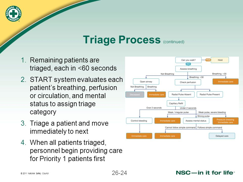Triage Process (continued)
