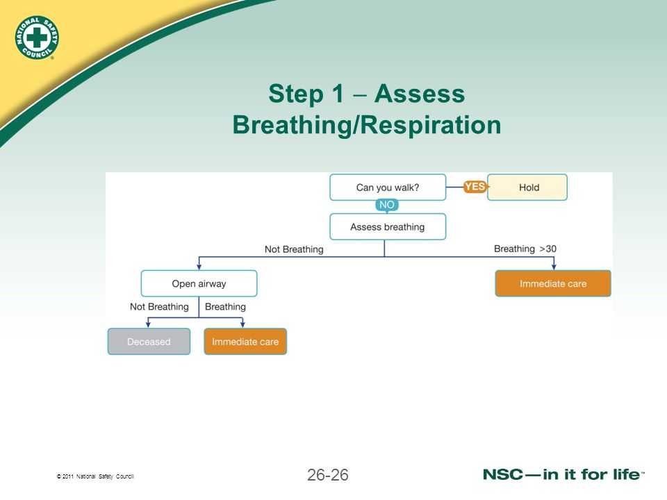 Step 1  Assess Breathing/Respiration