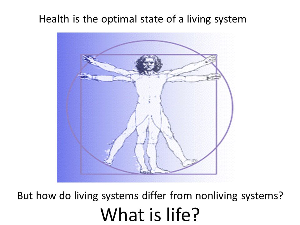 But how do living systems differ from nonliving systems