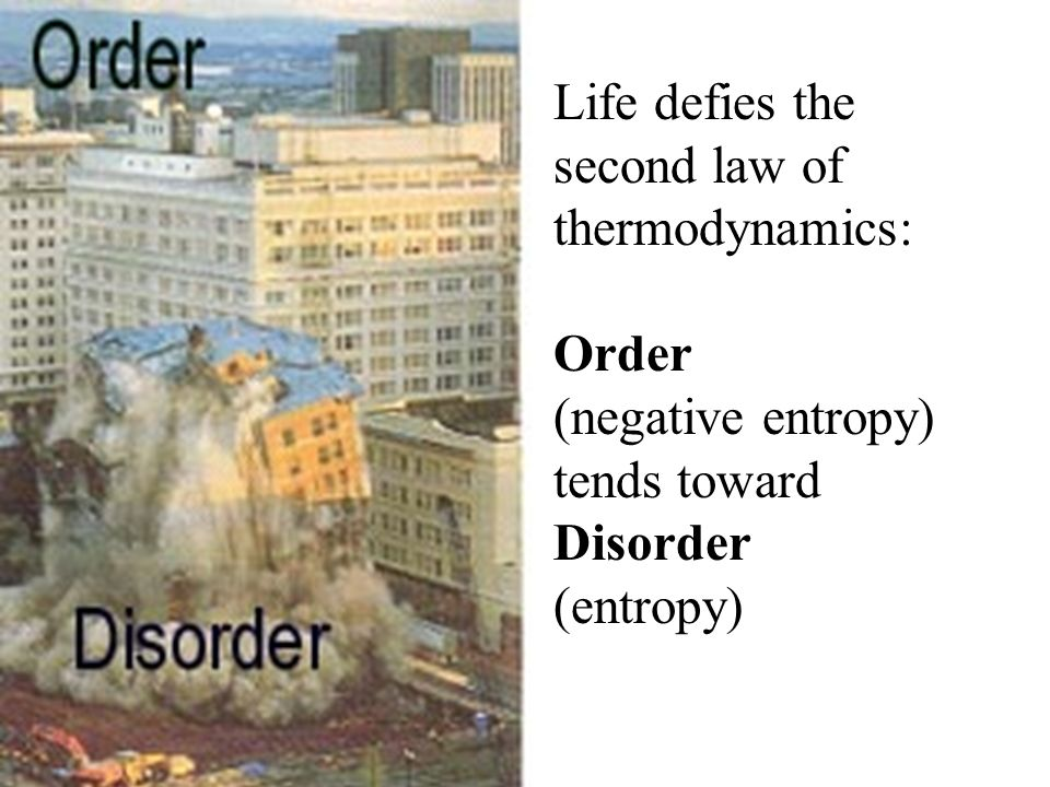 Life defies the second law of thermodynamics: Order. (negative entropy) tends toward. Disorder.
