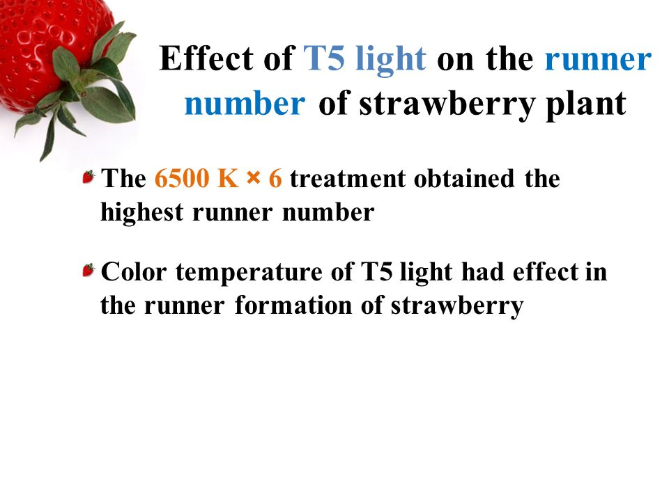 effect of light treatments on the Light therapy, also called chromatherapy or color therapy, is the use of specific colors as a healing technique the effect of color on cells was documented in the early 20th century when photobiologist john ott observed a change in cell behavior in response to colored filters from his camera.