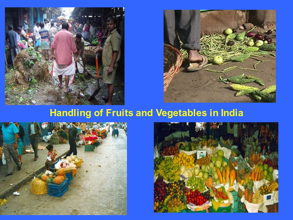 fruits and vegetables industry of india India's food processing sector covers fruit and vegetables spices meat and poultry milk and milk products, alcoholic beverages, fisheries, plantation, grain processing and other consumer product groups like confectionery, chocolates and cocoa products soya-based products, mineral water, high protein foods etc.