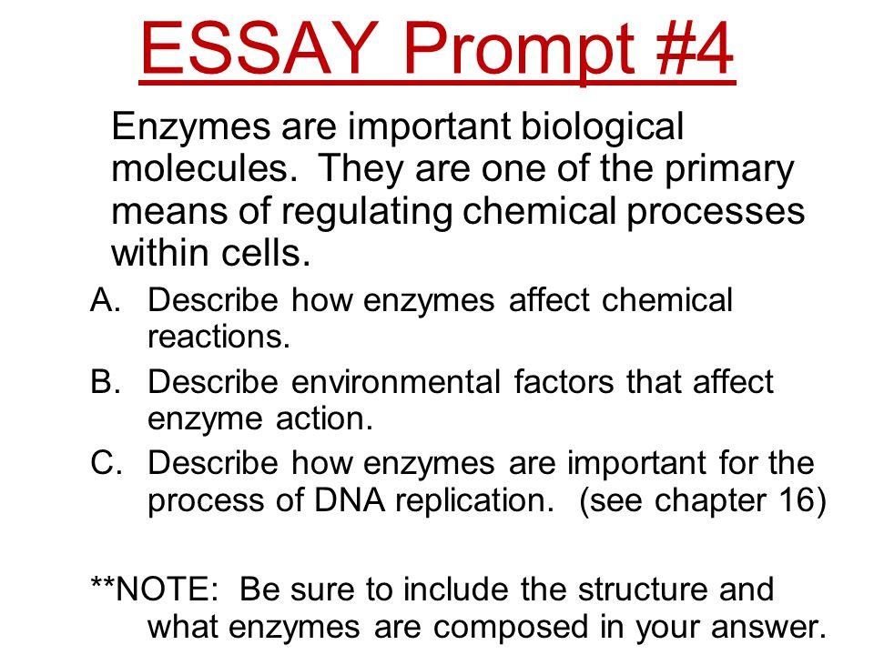 theme essay prompt
