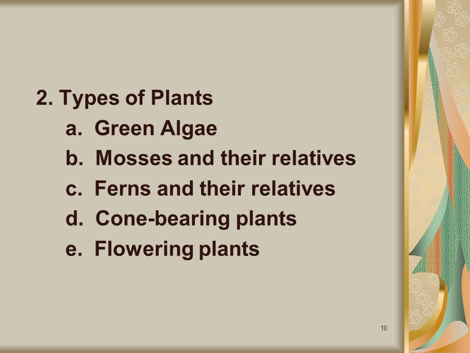 2. Types of Plants a. Green Algae. b. Mosses and their relatives. c. Ferns and their relatives.