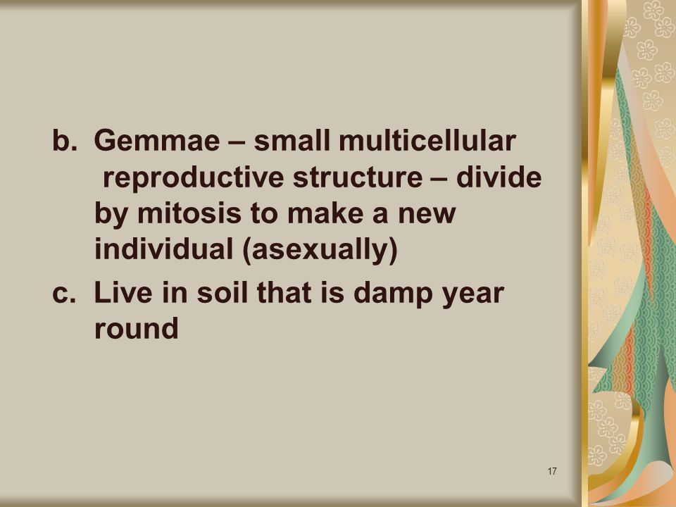 b. Gemmae – small multicellular. reproductive structure – divide