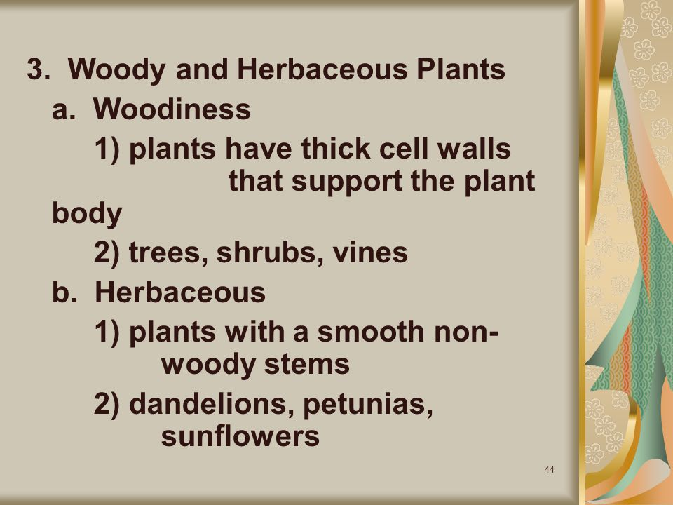 3. Woody and Herbaceous Plants