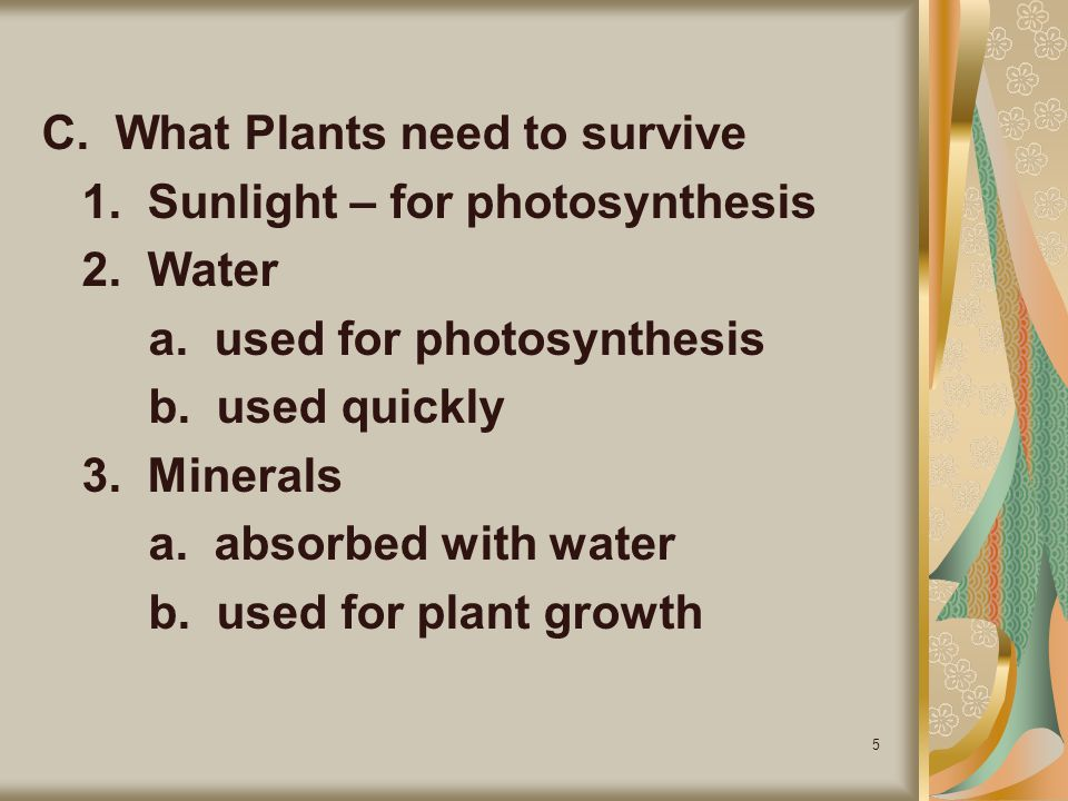 C. What Plants need to survive