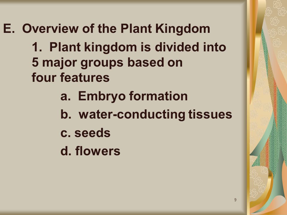 E. Overview of the Plant Kingdom