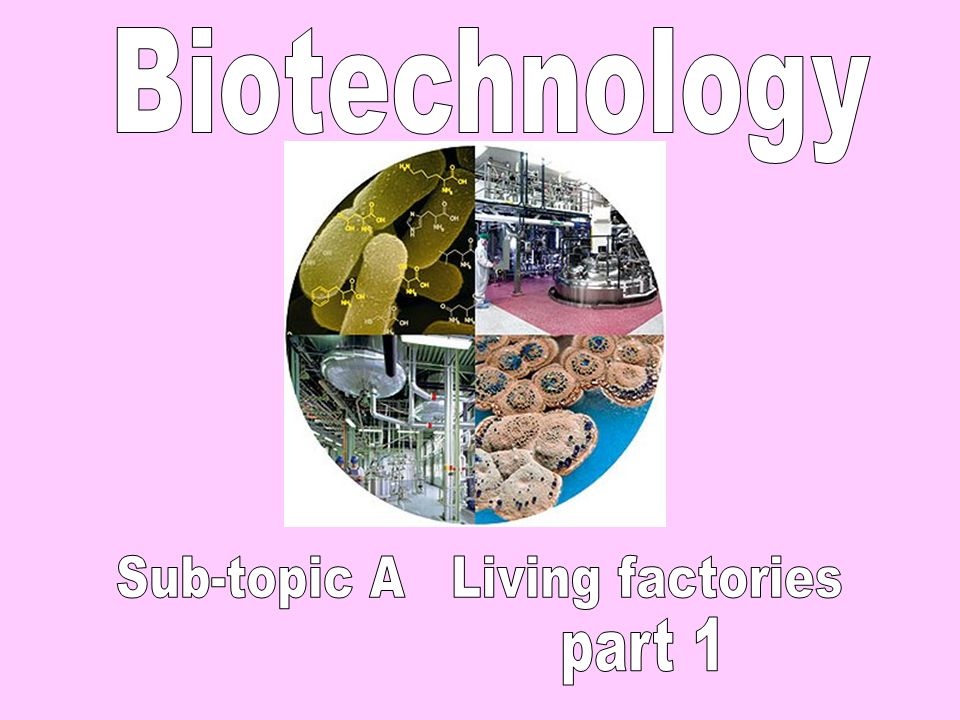 Sub-topic A Living factories