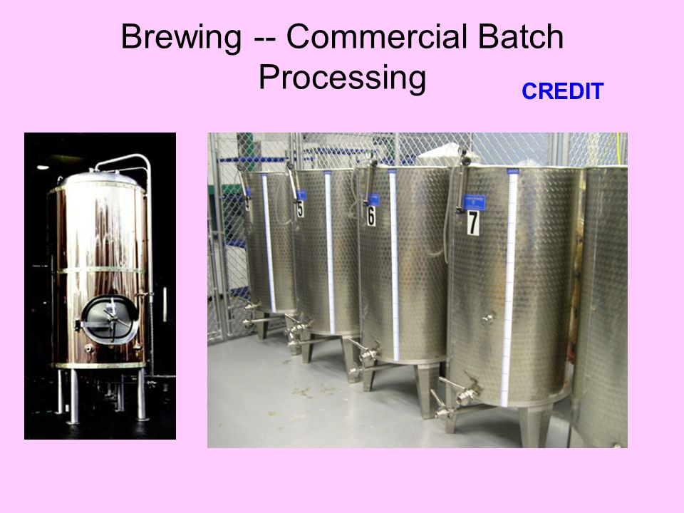 Brewing -- Commercial Batch Processing