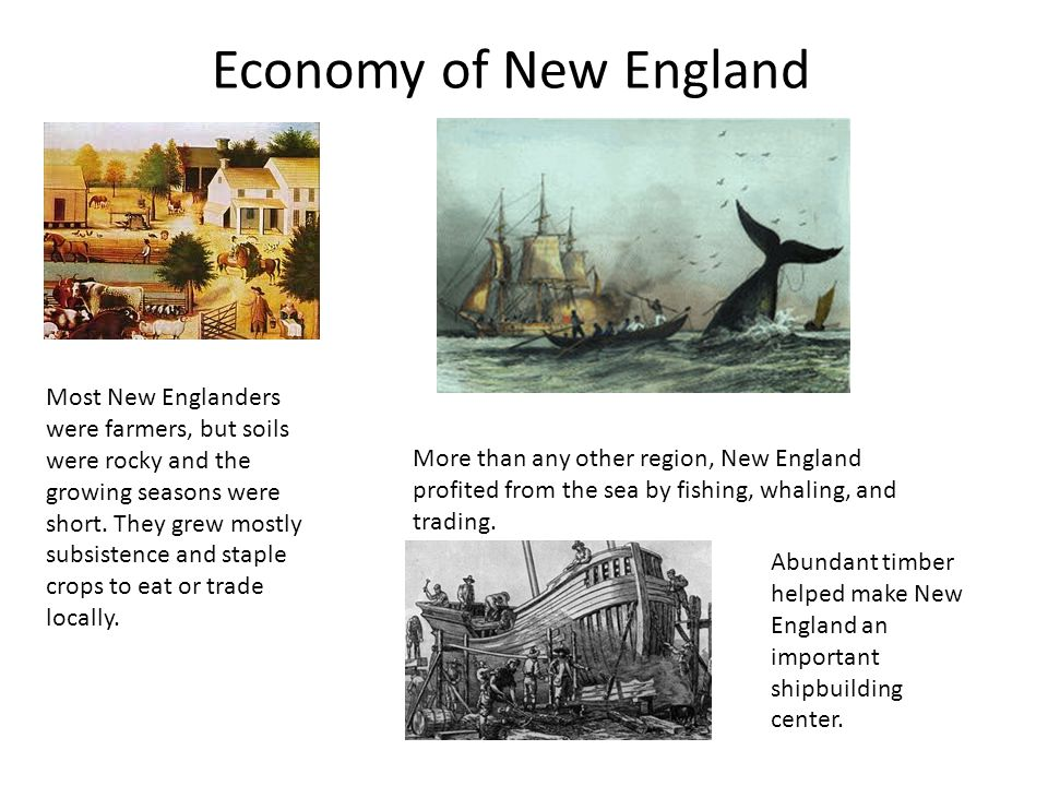 economic concerns during colonial period Life in colonial times  on your adventure back to colonial times, you will learn about clothing, family life, food, games and trades (jobs).