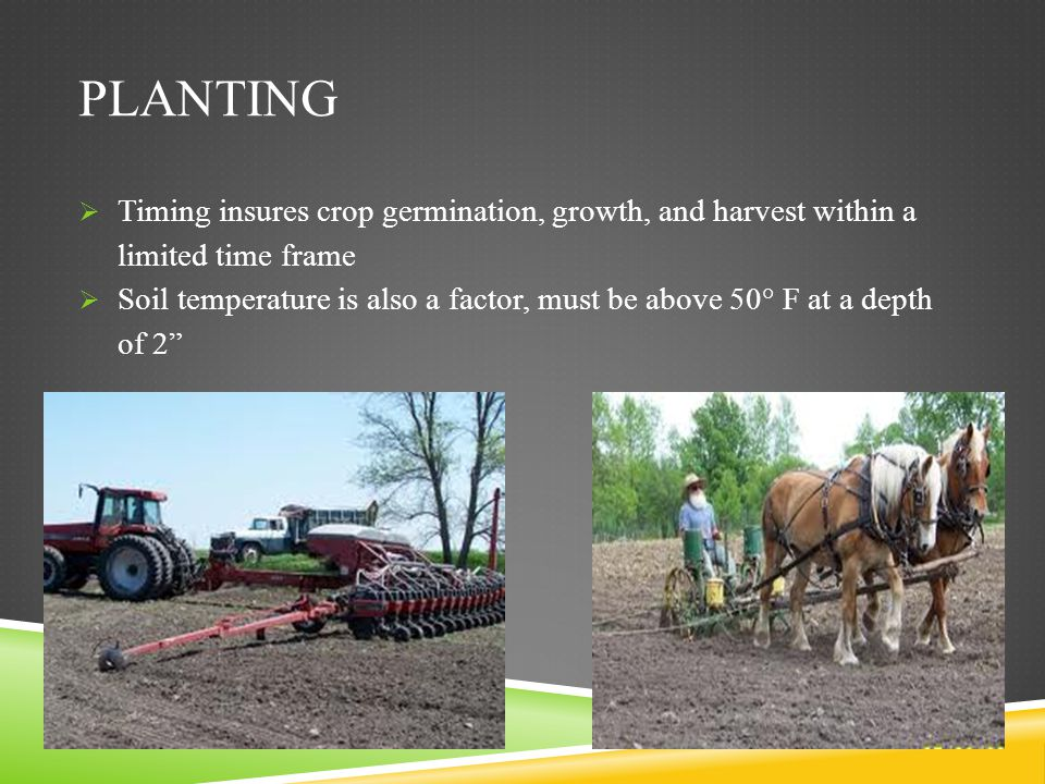 Planting Timing insures crop germination, growth, and harvest within a limited time frame.