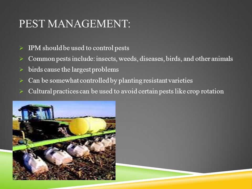 Pest management: IPM should be used to control pests