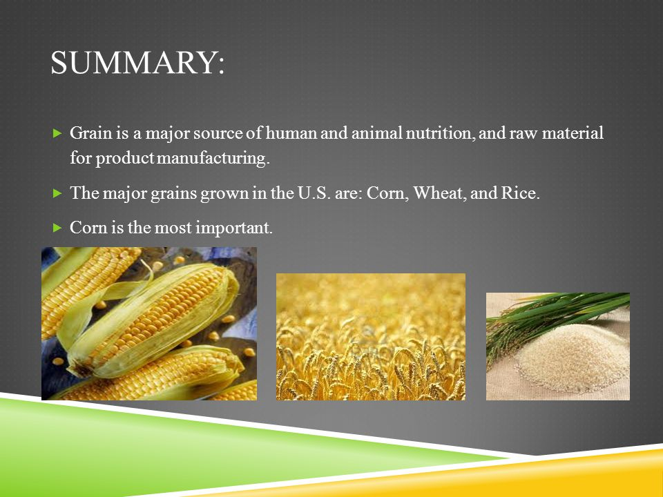 Summary: Grain is a major source of human and animal nutrition, and raw material for product manufacturing.
