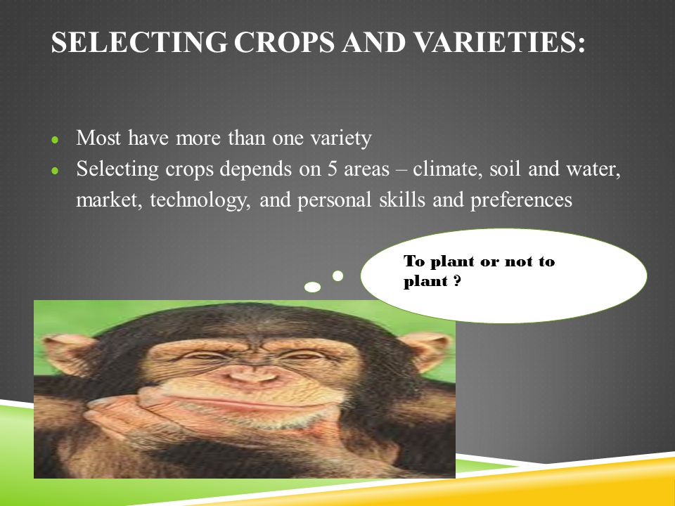 Selecting crops and varieties: