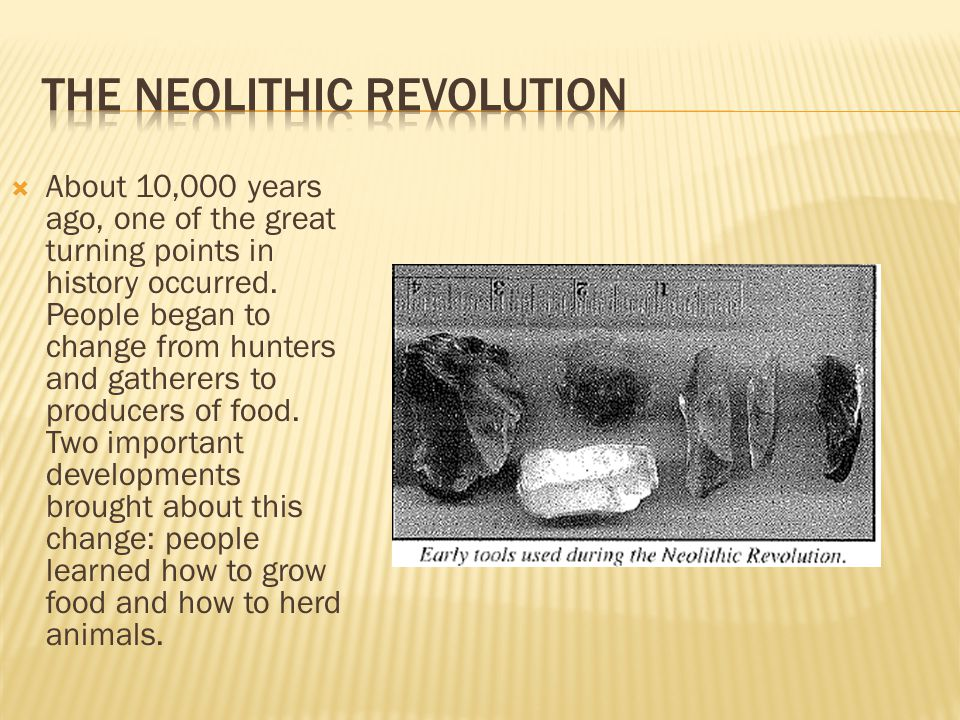 turning points for the neolithic revolution Turning points: the neolithic revolution causes: the flooding of rivers led to fertile soil rivers also provided water for irrigation people learned to domesticate plants and animals outlining the thematic essay.