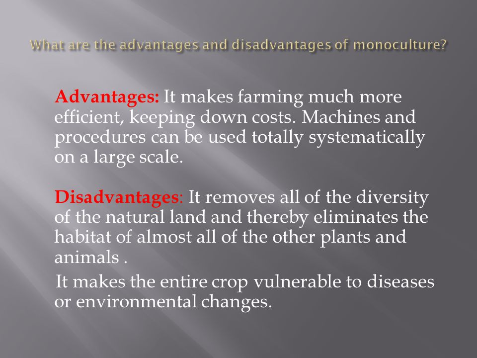 Advantages and disadvantages of natural environment