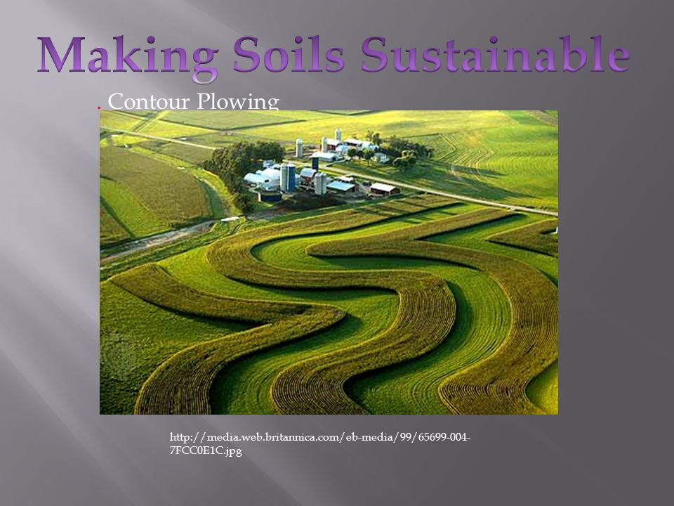 Is Agriculture Friend or Foe for the Environment? - ppt download