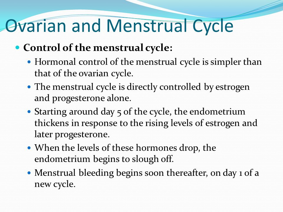 Ovarian and Menstrual Cycle