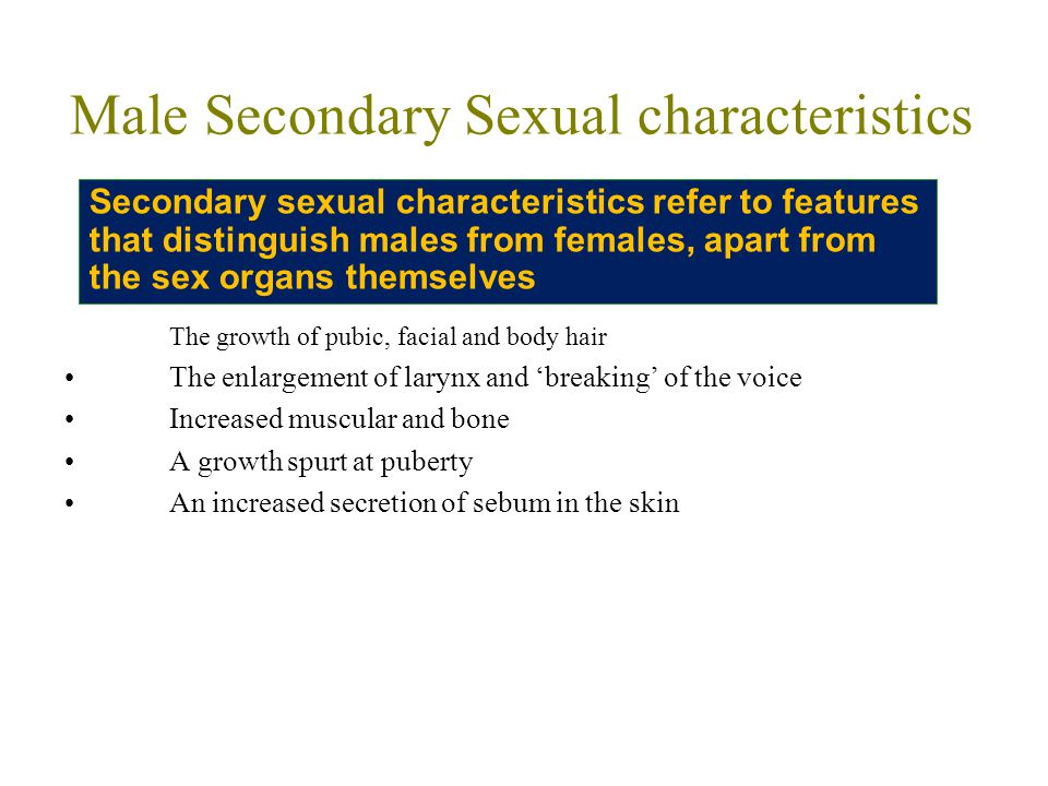 Examples of secondary sex characteristics