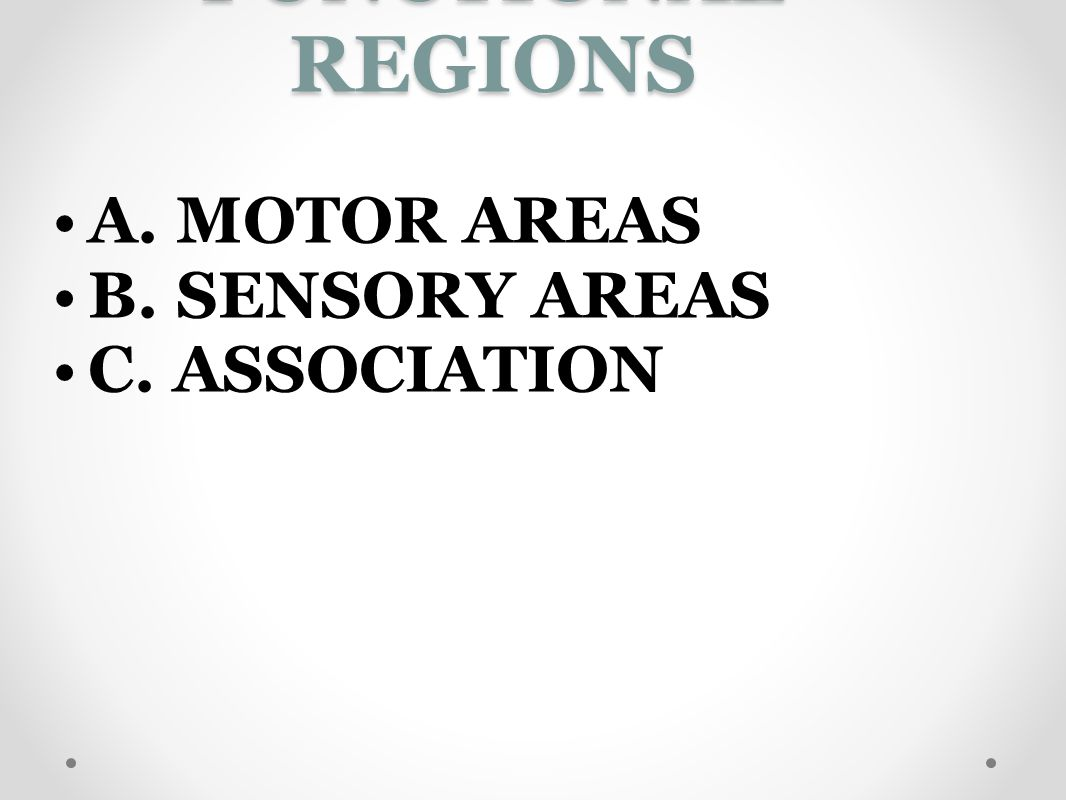 FUNCTIONAL REGIONS A. MOTOR AREAS B. SENSORY AREAS C. ASSOCIATION