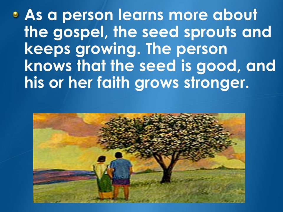 As a person learns more about the gospel, the seed sprouts and keeps growing.