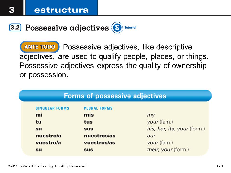 Possessive adjectives, like descriptive adjectives, are used to qualify people, places, or things. Possessive adjectives express the quality of ownership or possession.