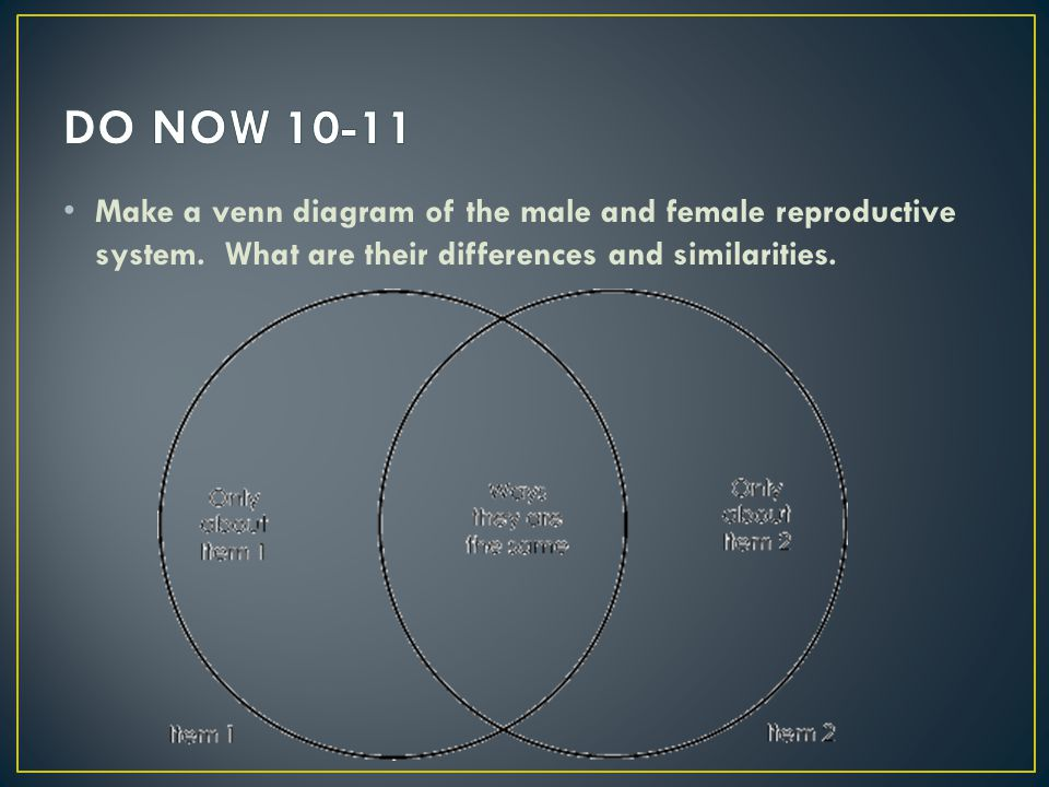 DO NOW 10-11 Make a venn diagram of the male and female reproductive system.