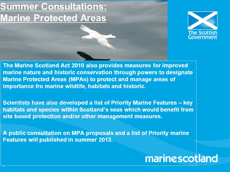Summer Consultations: Marine Protected Areas