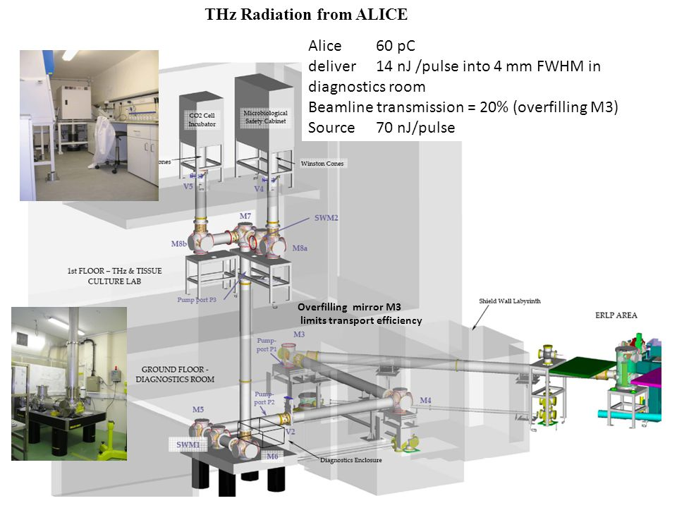 THz Radiation from ALICE