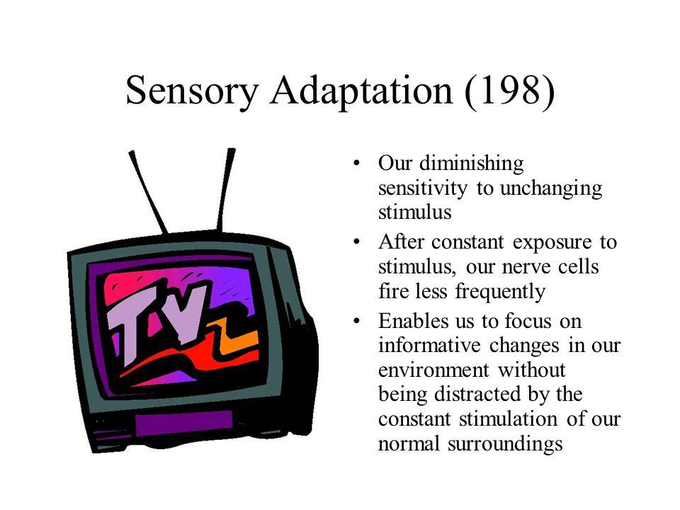 stimulus exposure Chapter 4: sensation and perception •stimulus –energy that prolonged exposure to unchanging stimuli sensory adaptation.