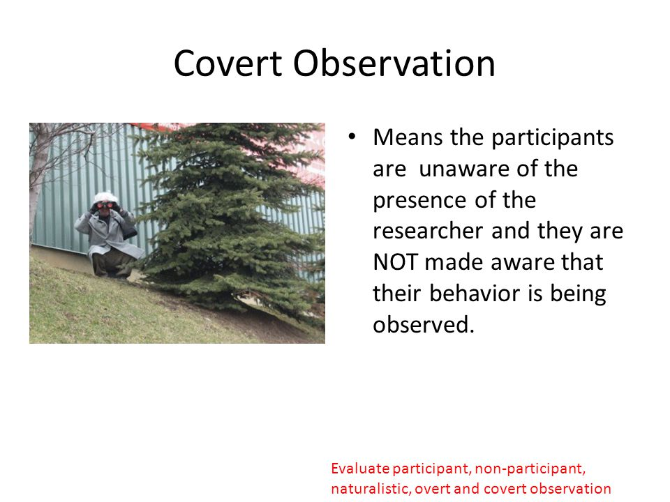 overt or covert observations Between overt and covert research: concealment and disclosure in an ethnographic study of commercial hospitality peter lugosi, phd school of services management.