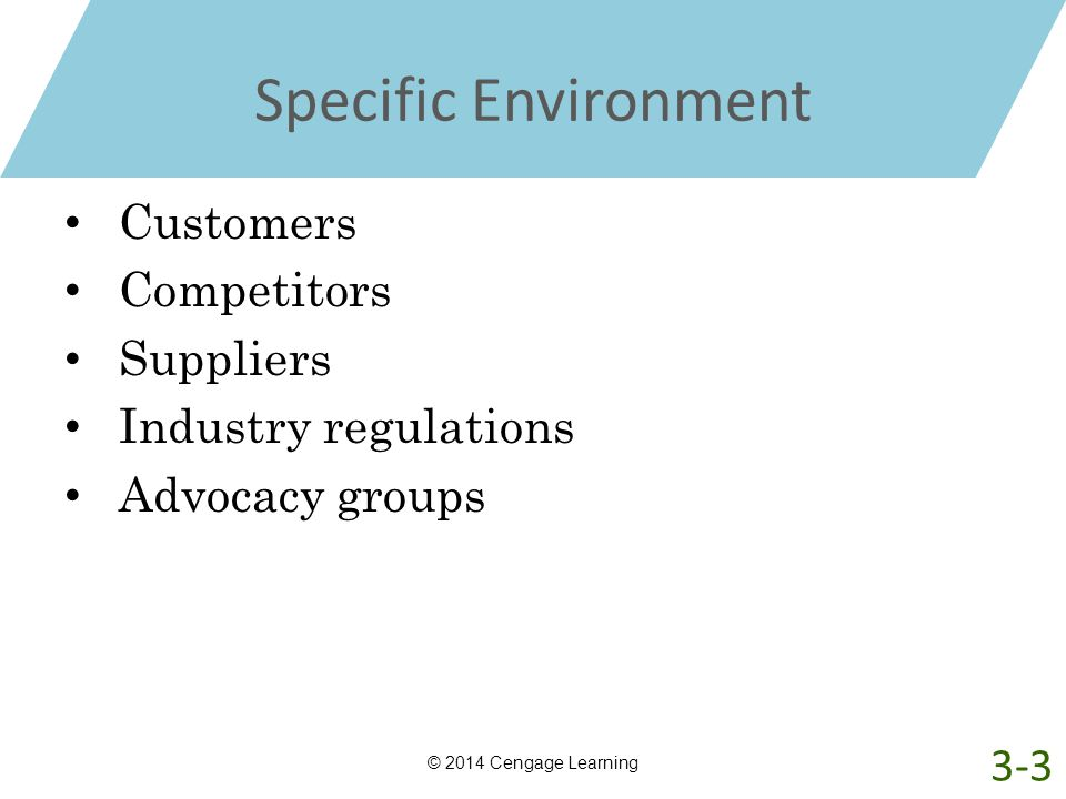 Specific Environment Customers Competitors Suppliers