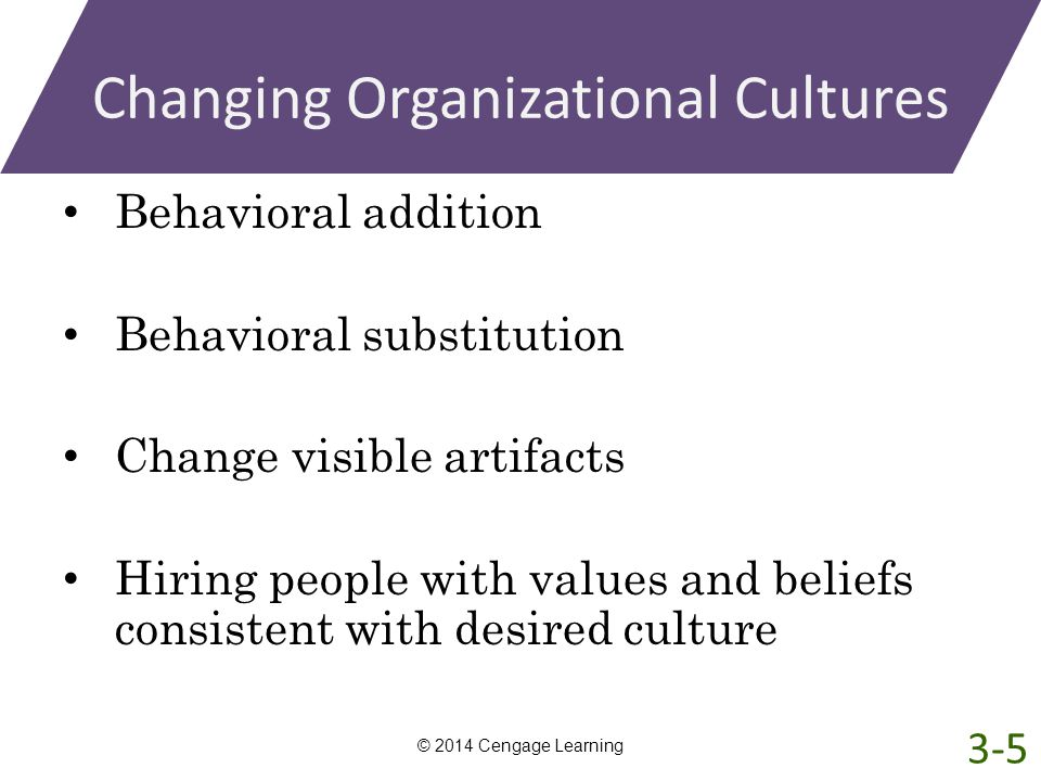 Changing Organizational Cultures
