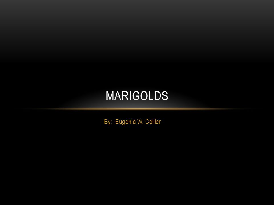 """a look into the journey to adulthood in marigolds by eugenia w collier Marigolds by eugenia w collier when i think of the hometown of my youth, all  dust of late summer—arid, sterile dust that gets into  """"yeh, look at 'er."""