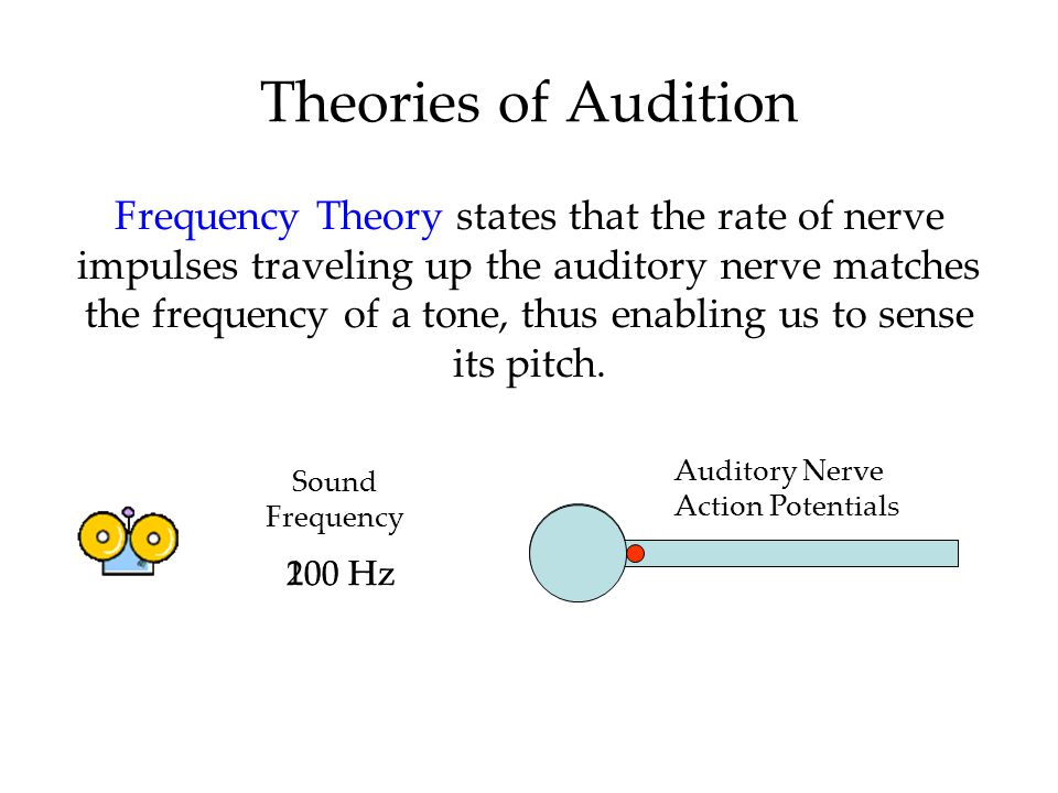 Theories of Audition