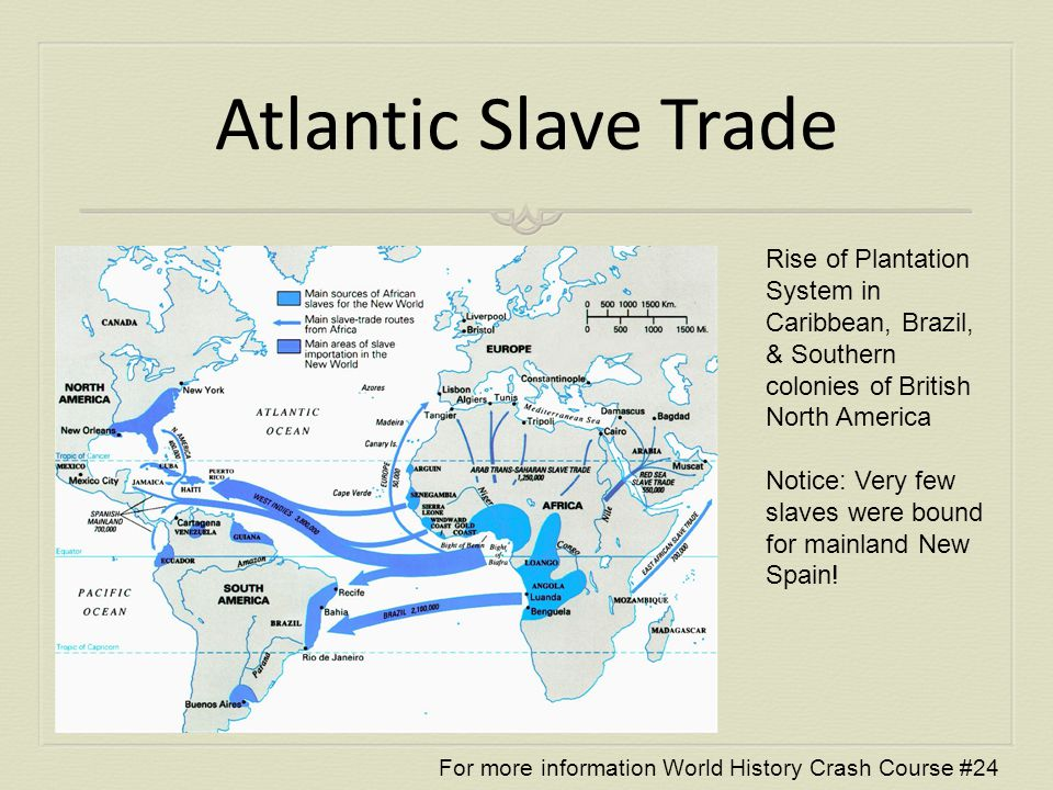 essay on the atlantic slave trade Royal orders given in 1510 for the importation of 50 slaves from spain to the  island of hispanola and the trans-atlantic slave trade had begun' (afrique.