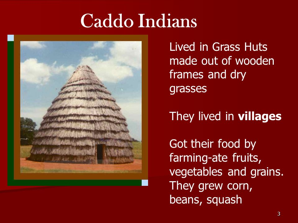 American Indians in Texas - ppt video online download