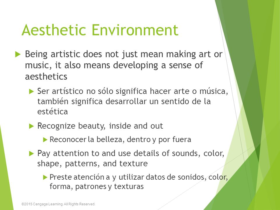 Aesthetic Environment