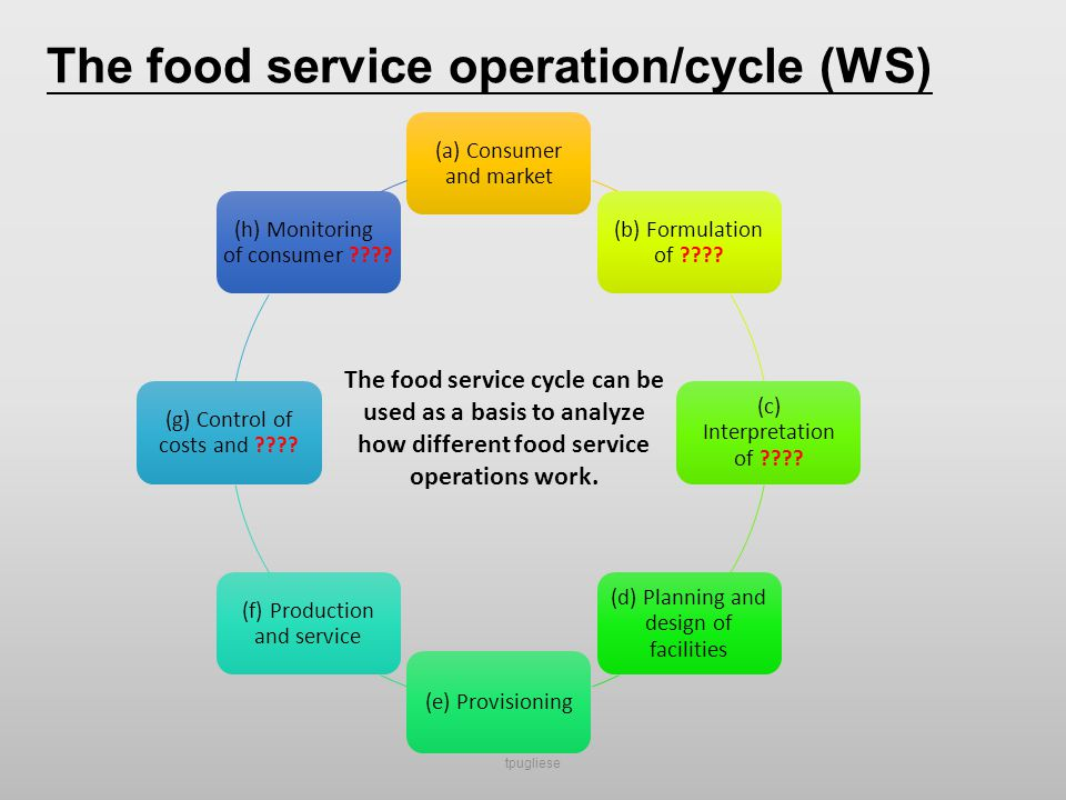 The different food service operations and