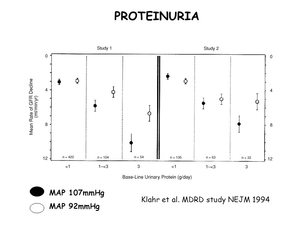 High Protein Intake Associates with Cardiovascular Events ...