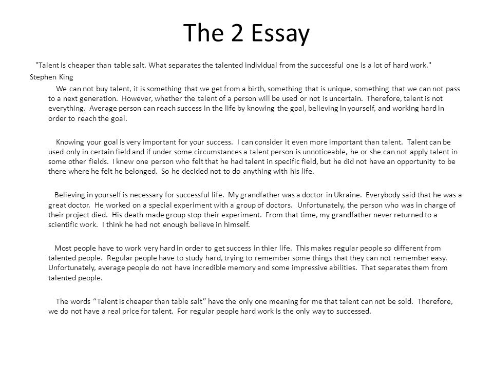 Essay about success in life