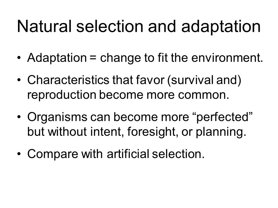 natural selection and adaptation relationship counseling