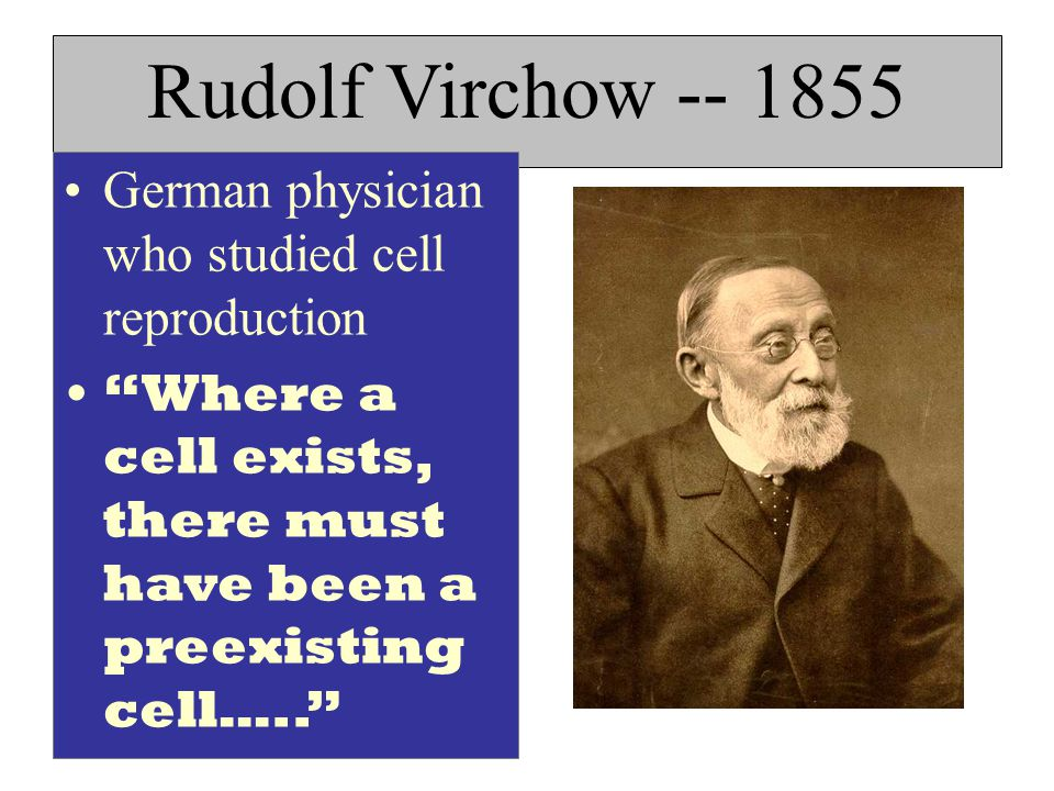 Topic cells aim explain the cell theory and the scientists how cell theory reading worksheet rudolf virchow cell theory timeline rudolf virchow facts