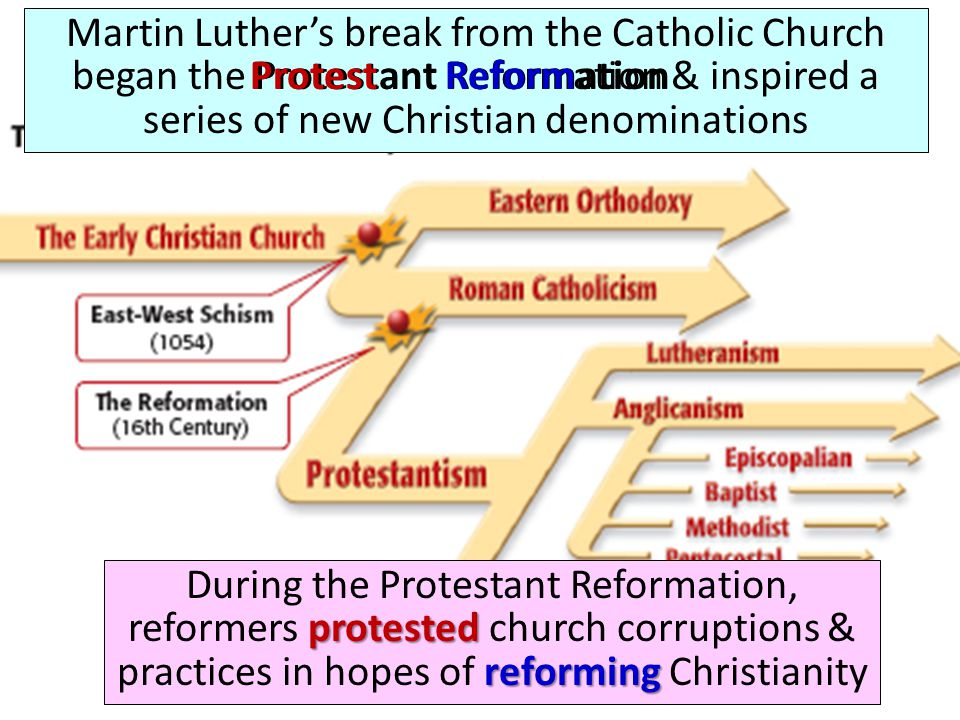 the reformation of the catholic church The reformation began in northern and central europe with reformers such as john calvin, henry viii and martin luther these leaders questioned the catholic europe and the catholic church's.