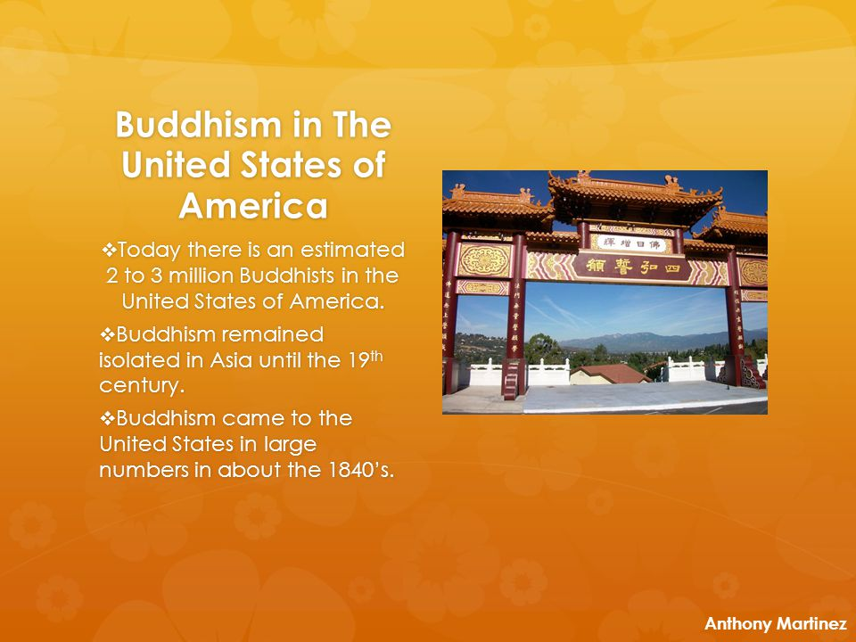 buddhism in the united states essay The boisi center papers on religion in the united states religious practice in the united states this paper examines how americans practice their faith in their everyday lives.