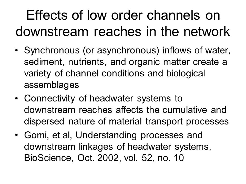 Effects of low order channels on downstream reaches in the network