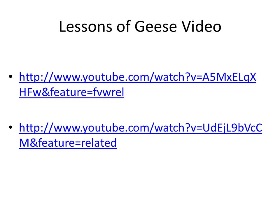 Lessons of Geese Video   v=A5MxELqXHFw&feature=fvwrel.