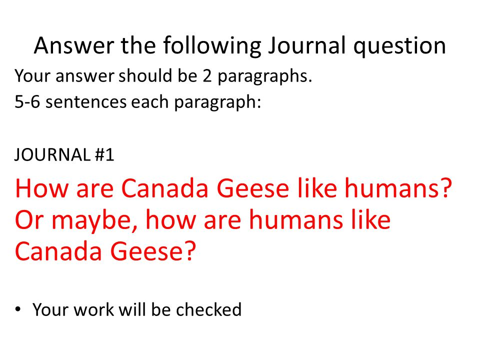 Answer the following Journal question